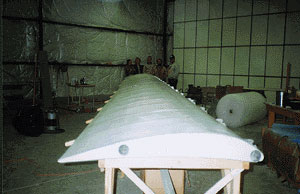 Stingray left wing section